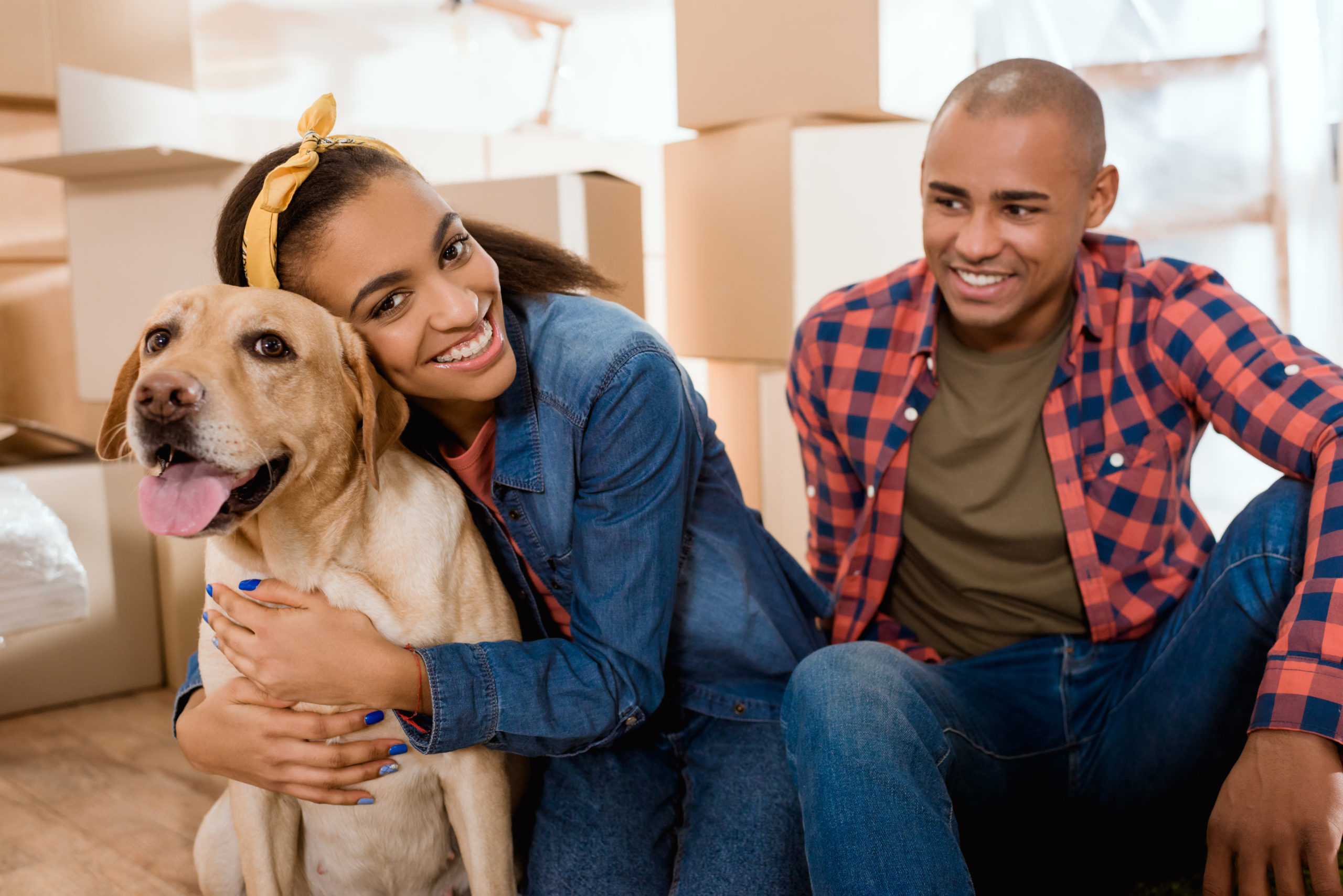 Things to Consider When Moving With Pets