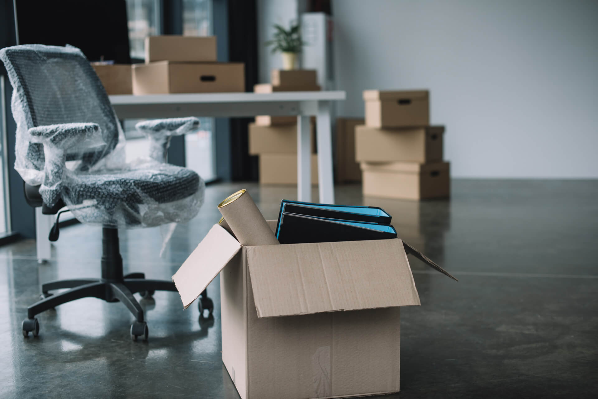 Dallas Office Packed Up By Commercial Movers